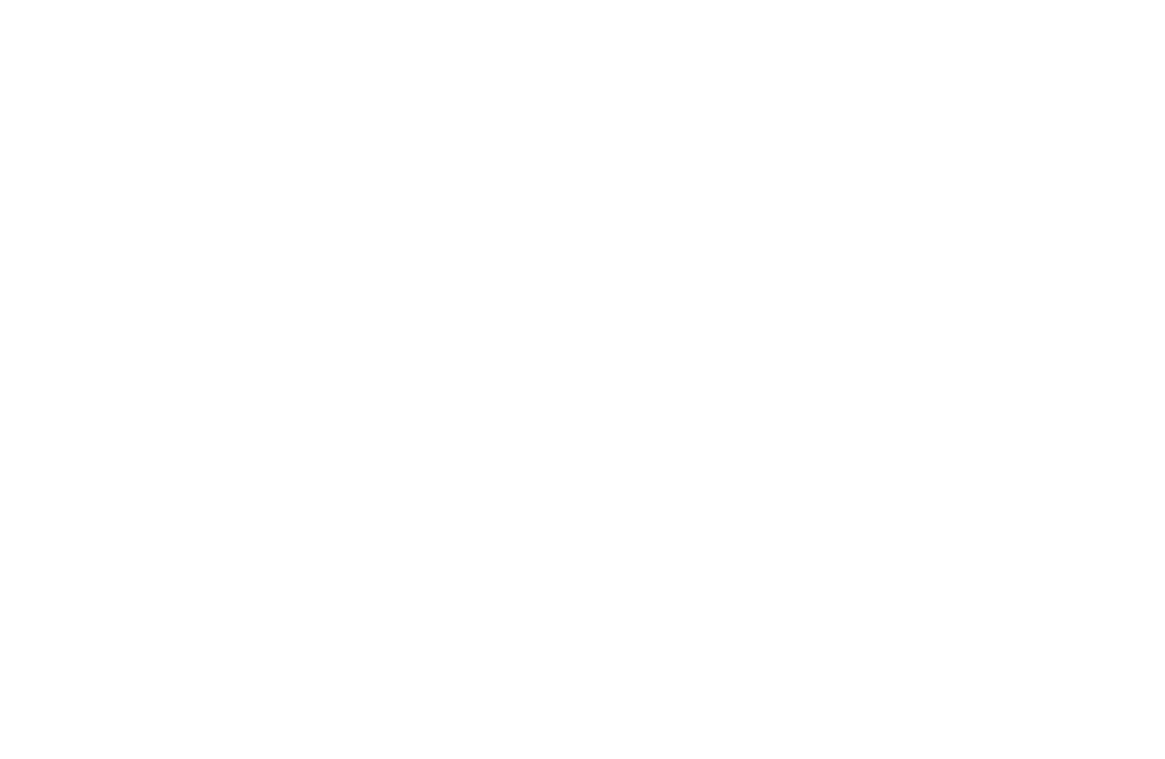 DISSIDENCE